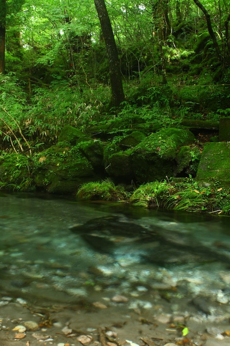 Oike_spring_water_spot2
