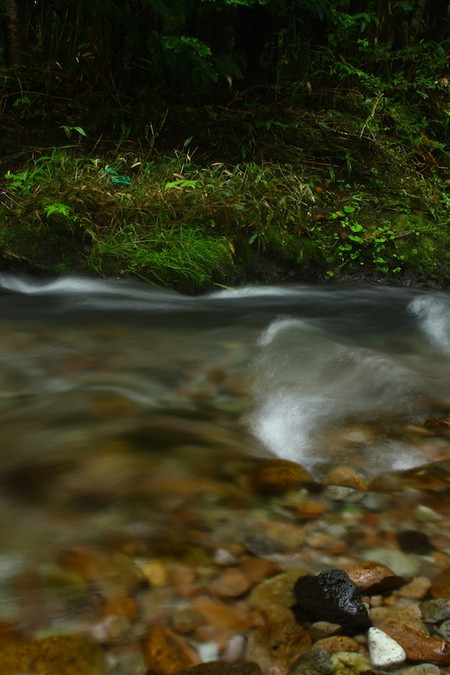 Oike_spring_water_spot5