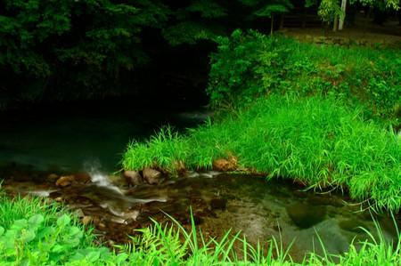 Ikeyama_spring_water_spot14