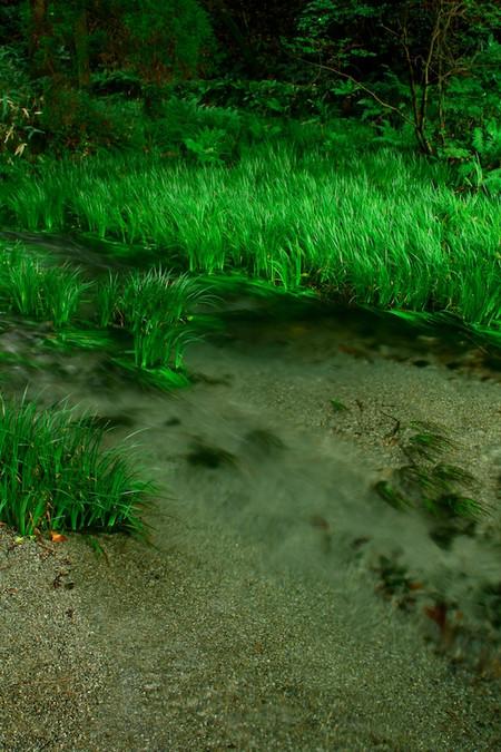 Ikeyama_spring_water_spot2