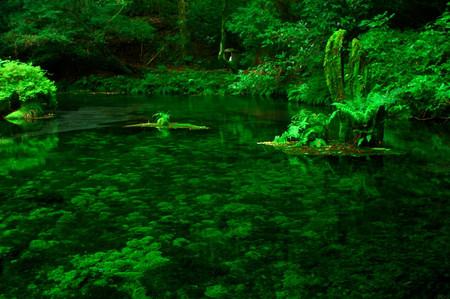 Ikeyama_spring_water_spot6