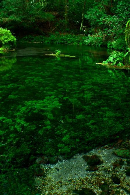 Ikeyama_spring_water_spot7