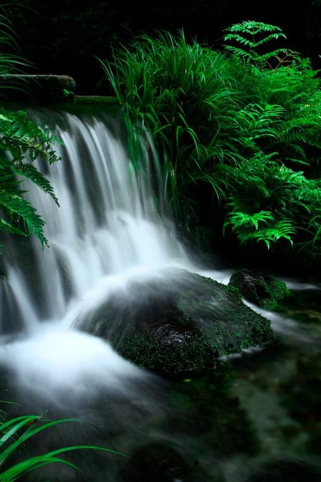 Ikeyama_spring_water_spot8_2