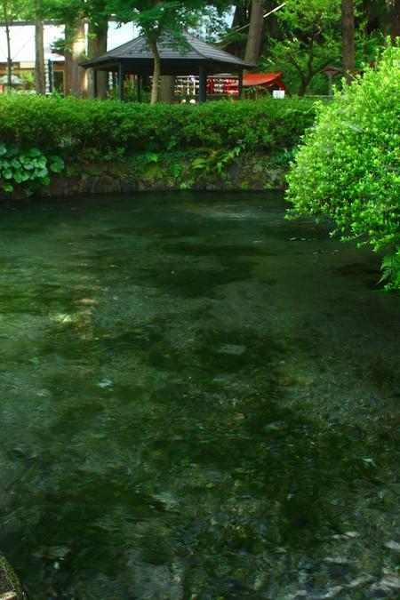 Shirakawa_spring_water_spot10