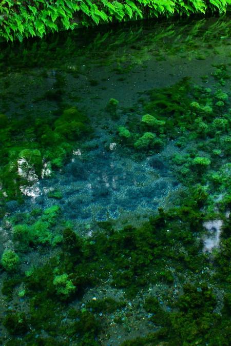 Shirakawa_spring_water_spot2