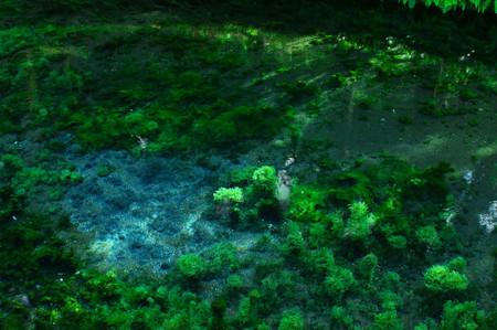 Shirakawa_spring_water_spot3