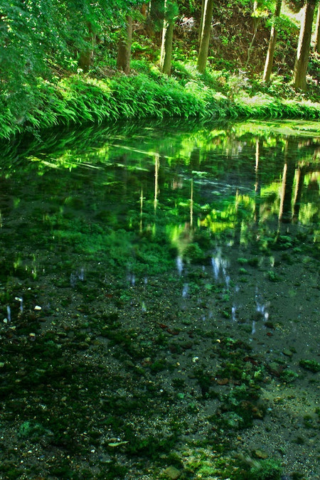 Shirakawa_spring_water_spot9